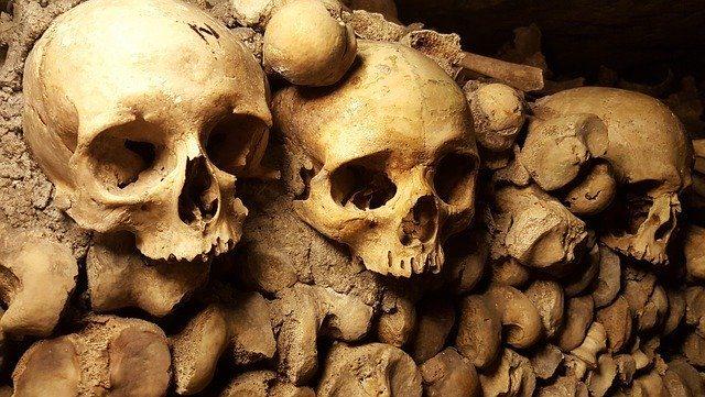 Des crânes et des squelettes dans les Catacombes.