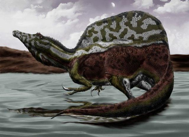 Une nouvelle découverte remet en question notre vision de ce dinosaure iconique