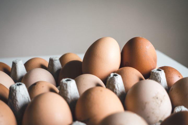 Des chercheurs de Cambridge imagine un robot qui fait une omelette