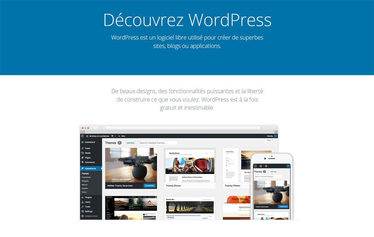 WordPress CMS