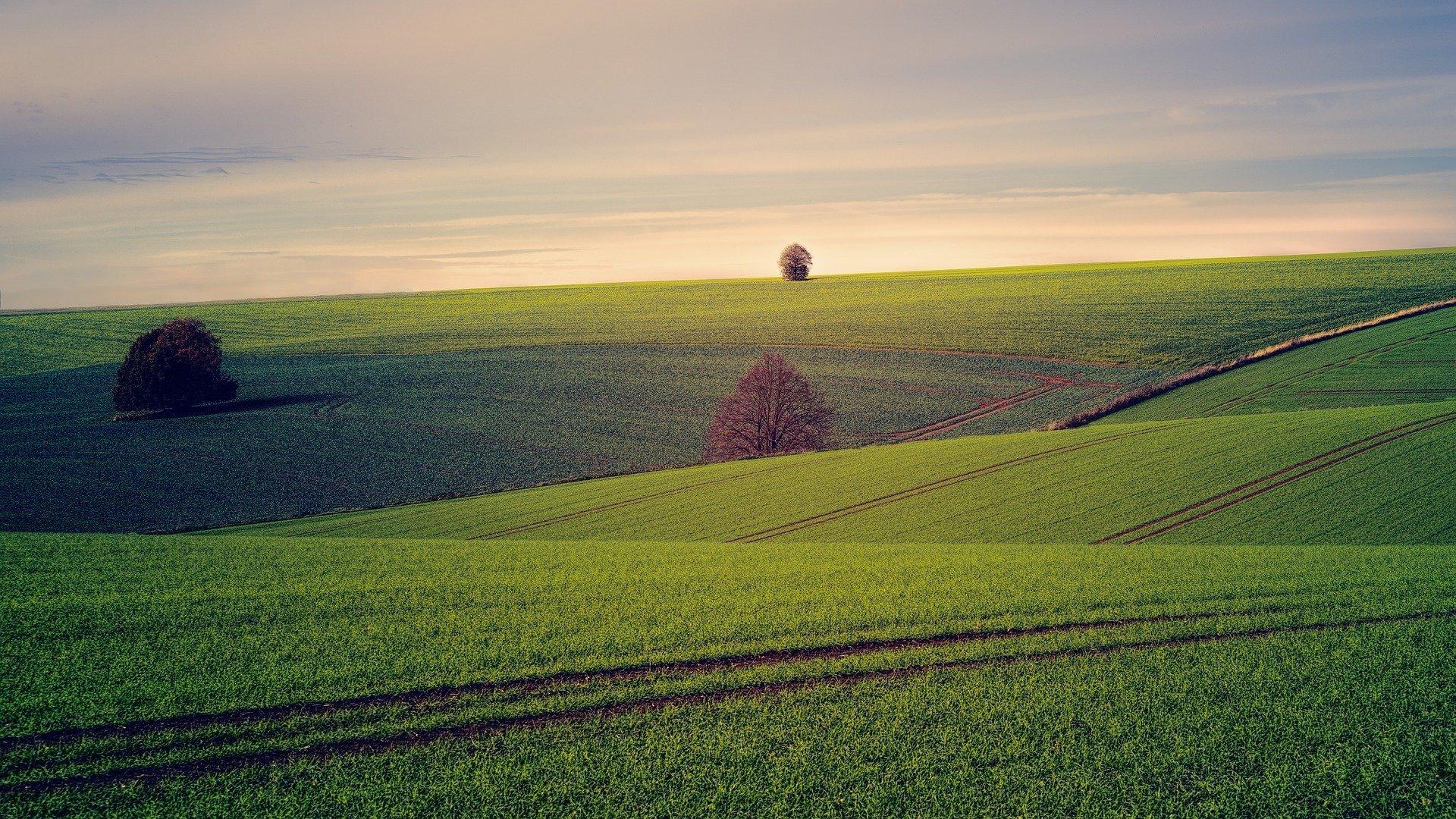 La technologie a révolutionné le monde de l'agriculture.