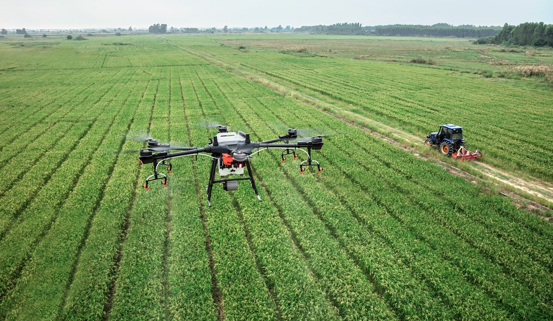 Drones allow farmers to better understand the state of crops.