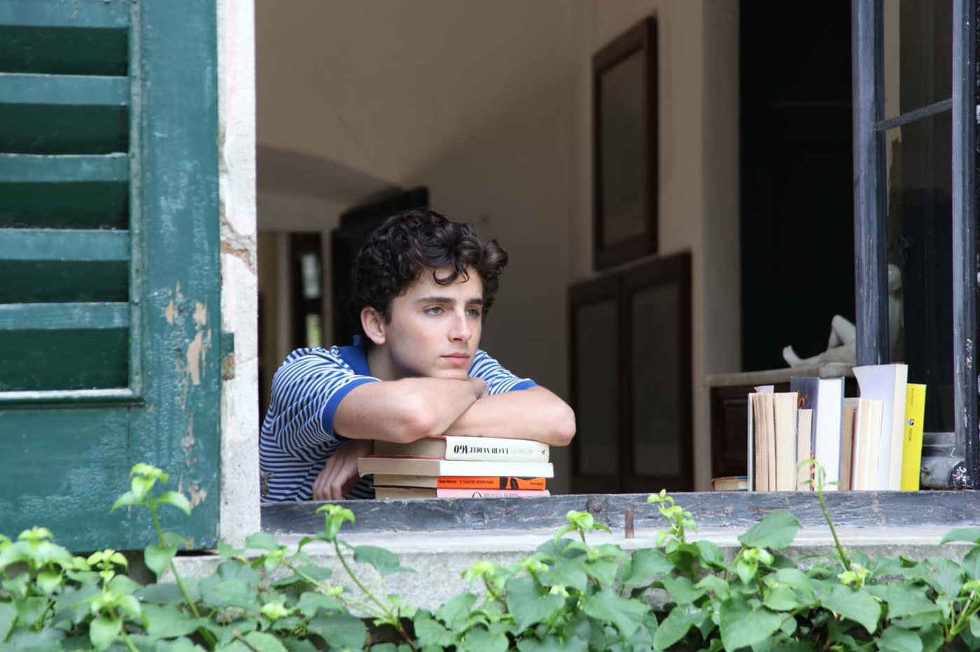 Netflix Call me by your name